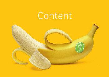AMSTART Content